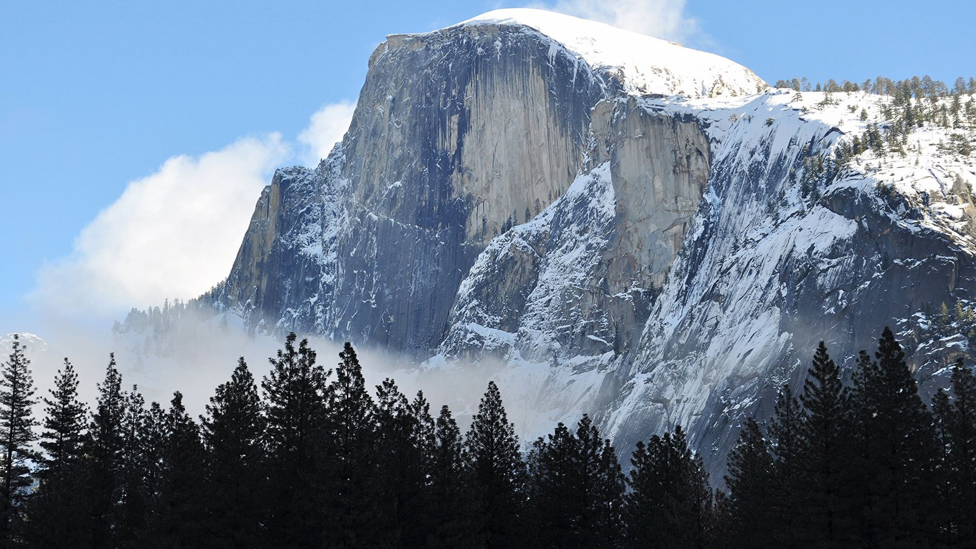 Half Dome, mountain, Yosemite, National Park, California, forest, 4k (horizontal)