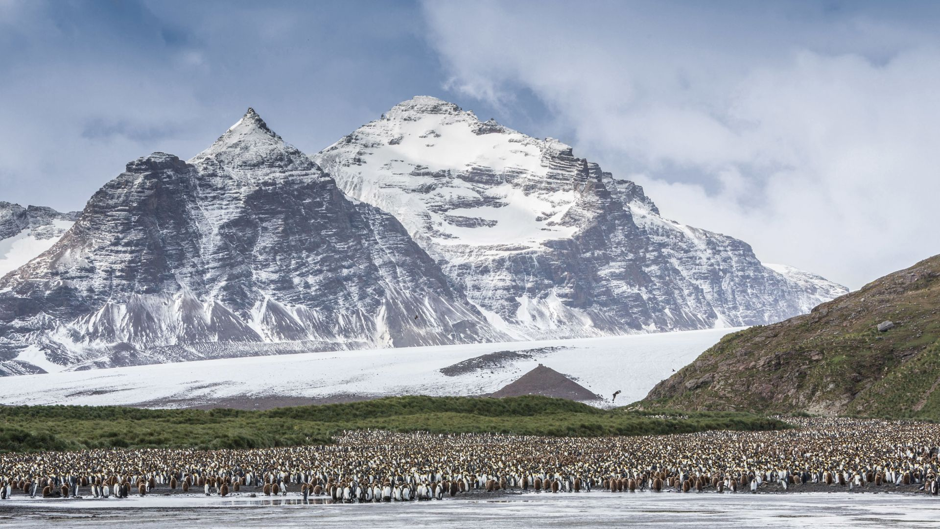 Antarctica, mountains, penguins, 5k (horizontal)