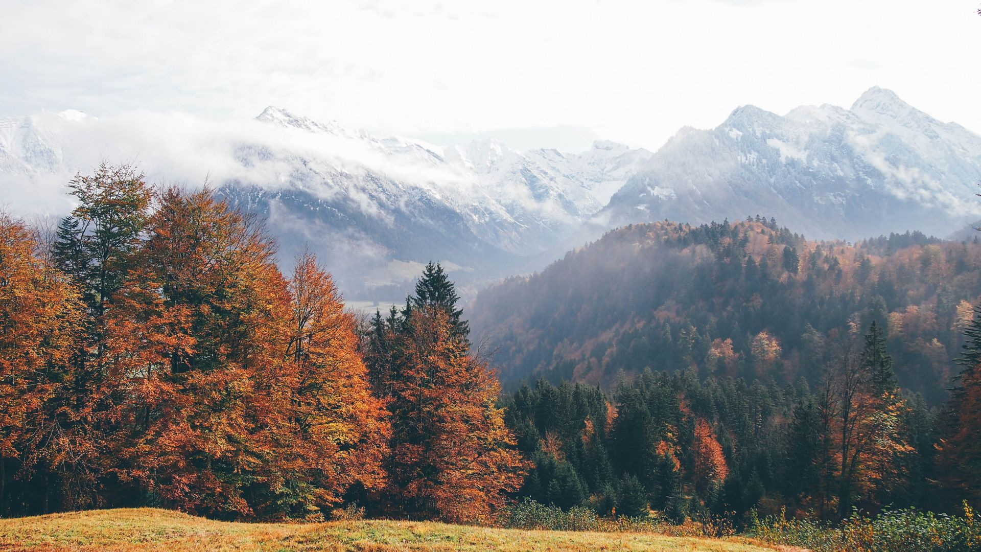 Oberstdorf, Germany, mountains, autumn, forest, 4k (horizontal)