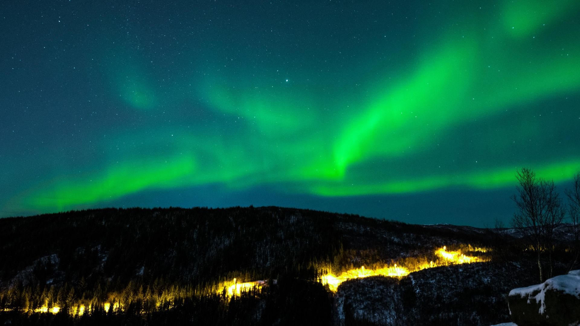 northern lights, sky, winter, mountains, forest, 5k (horizontal)