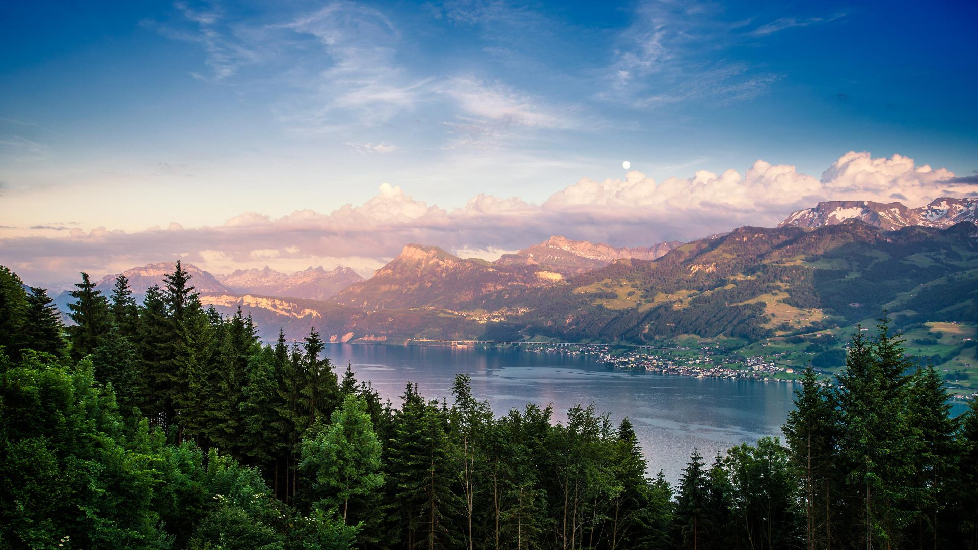 Lake Zurich, forest, sky, mountains, 4k (horizontal)