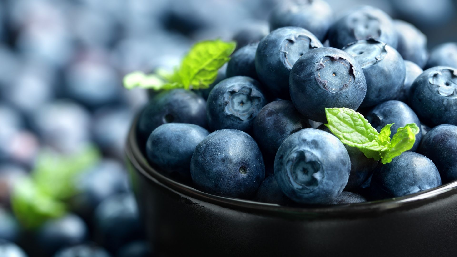 blueberry, berries, 4k (horizontal)