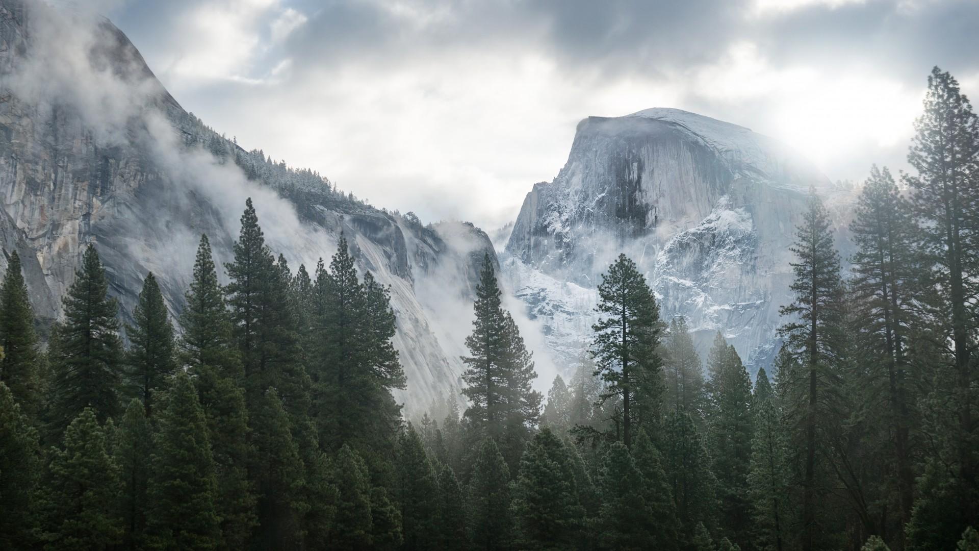 Wallpaper Yosemite 5k 4k Wallpaper 8k Forest Osx Apple