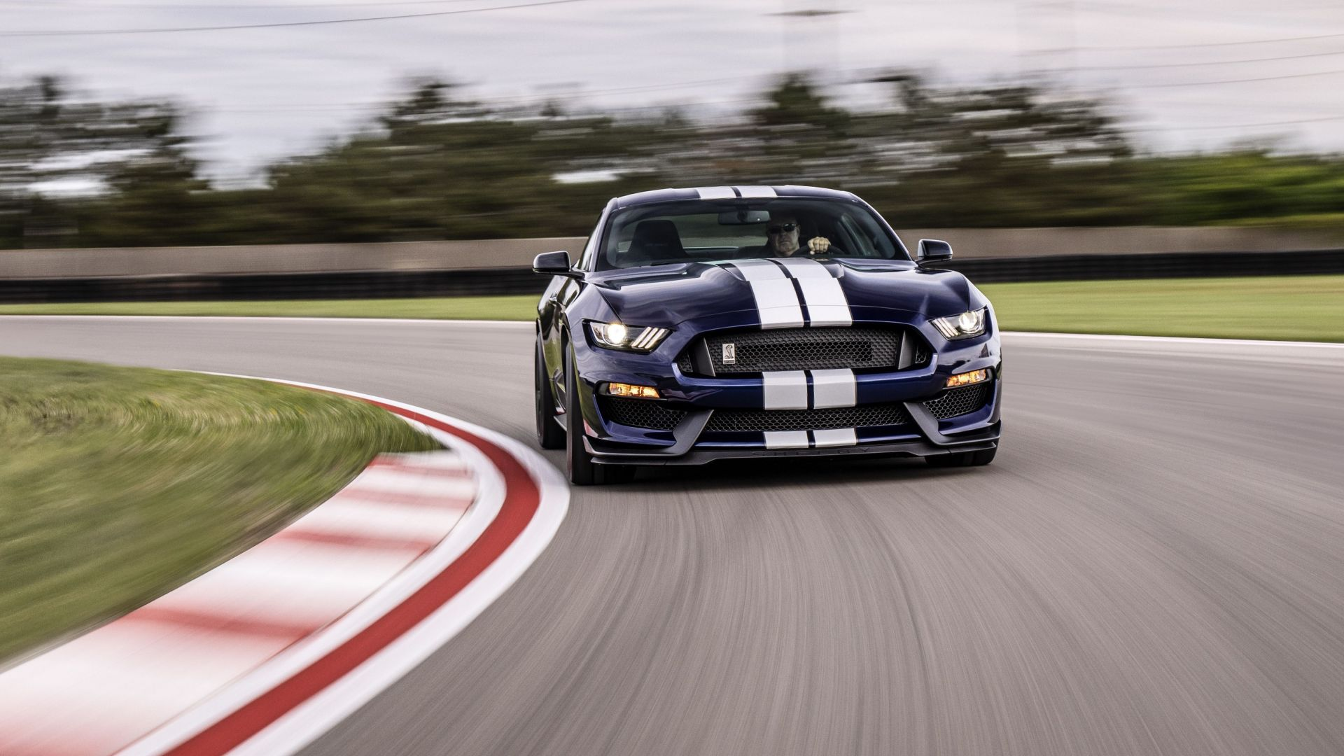 Ford Mustang Shelby GT350, 2019 Cars, 4K (horizontal)