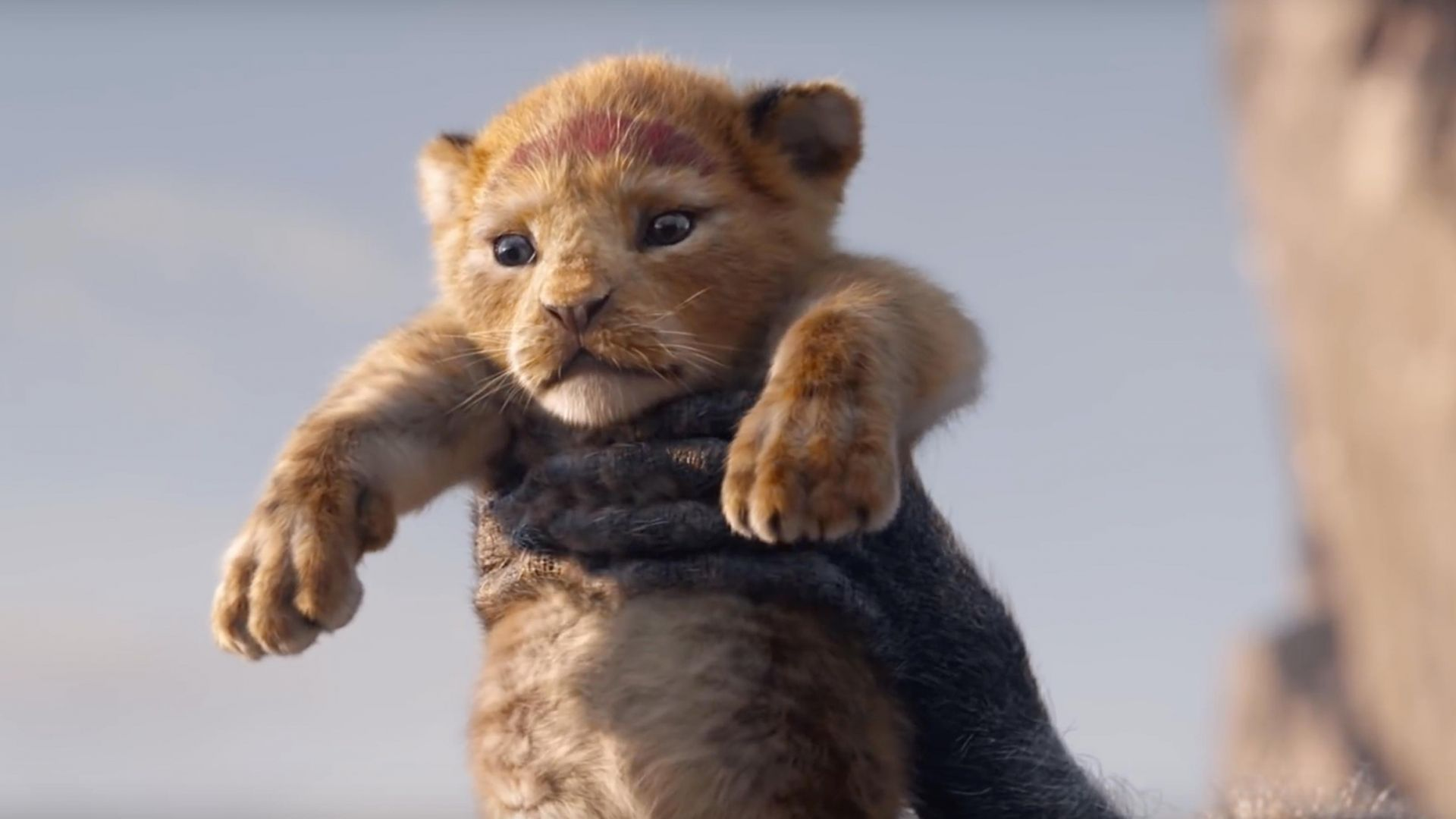 The Lion King, HD (horizontal)