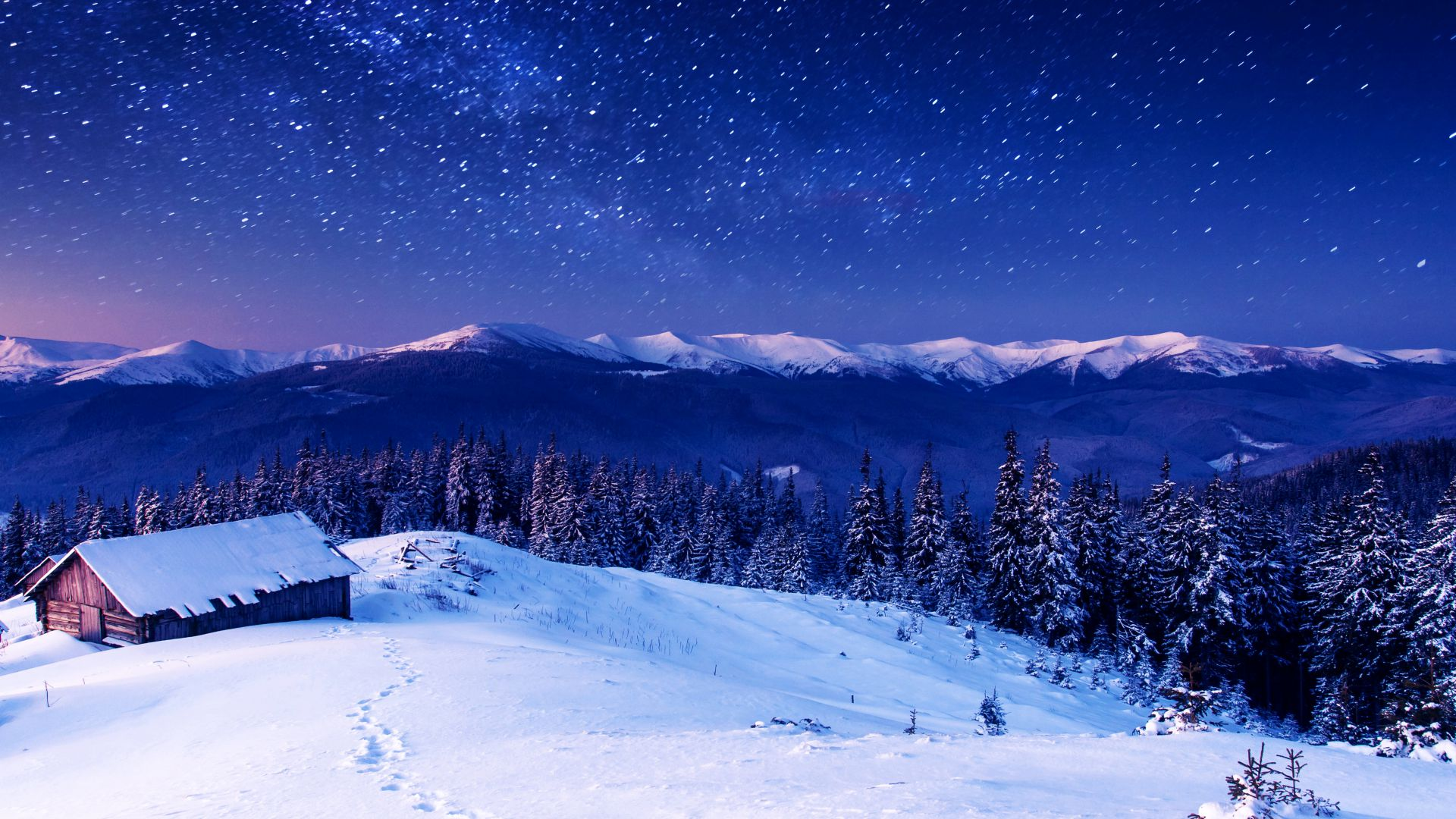 Mountains, 5k, 4k wallpaper, 8k, night, stars, trees, sky, snow (horizontal)