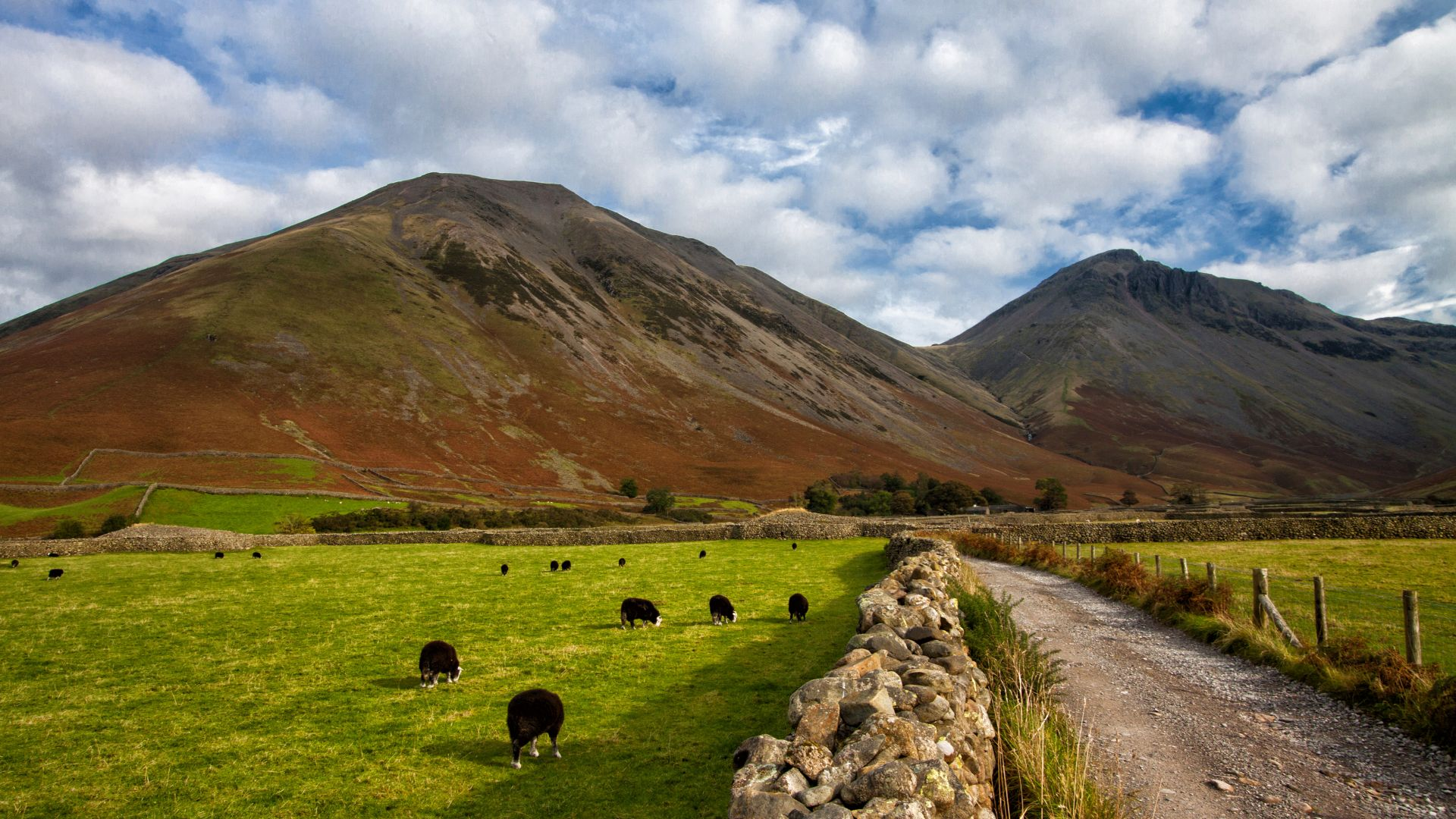 Lake District, 5k, 4k wallpaper, National Park, Cumbria, England, hills, meadows, goats (horizontal)