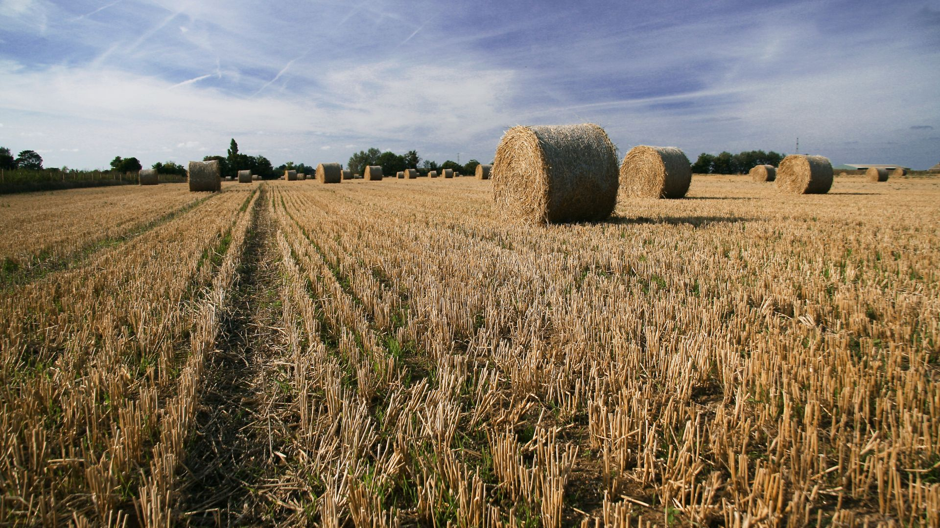 Faversham, 5k, 4k wallpaper, Kent, England, hay, field, meadows, sky (horizontal)