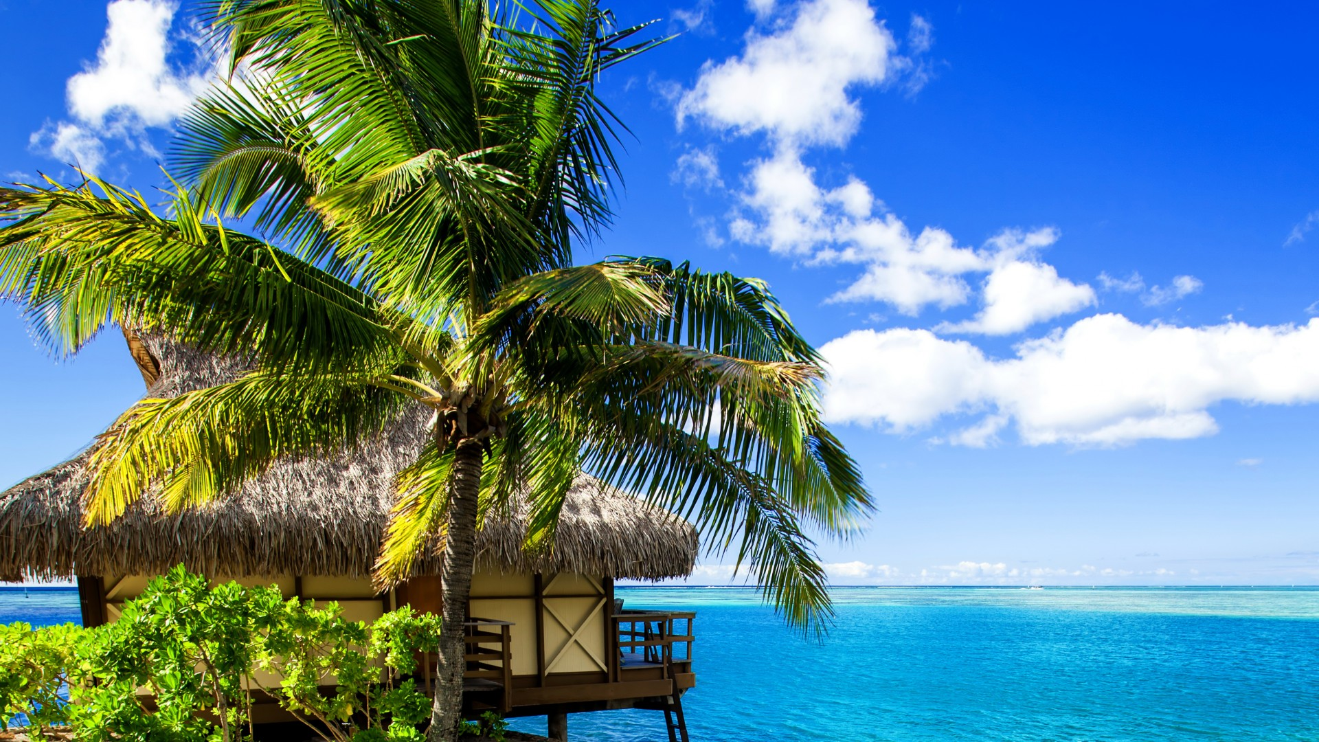 Wallpaper Maldives 4k Hd Wallpaper Holidays Vacation Travel
