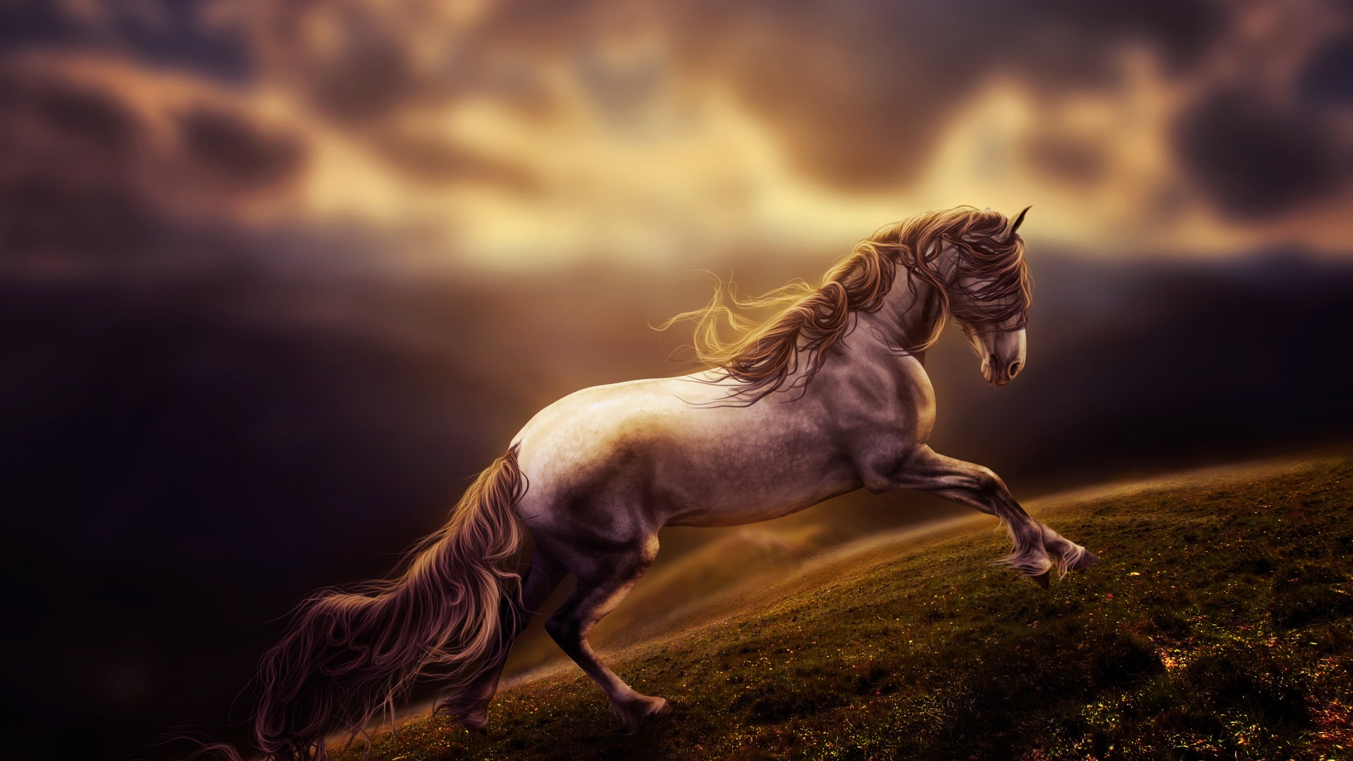 Horse, clouds, sky, gray, landscape (horizontal)
