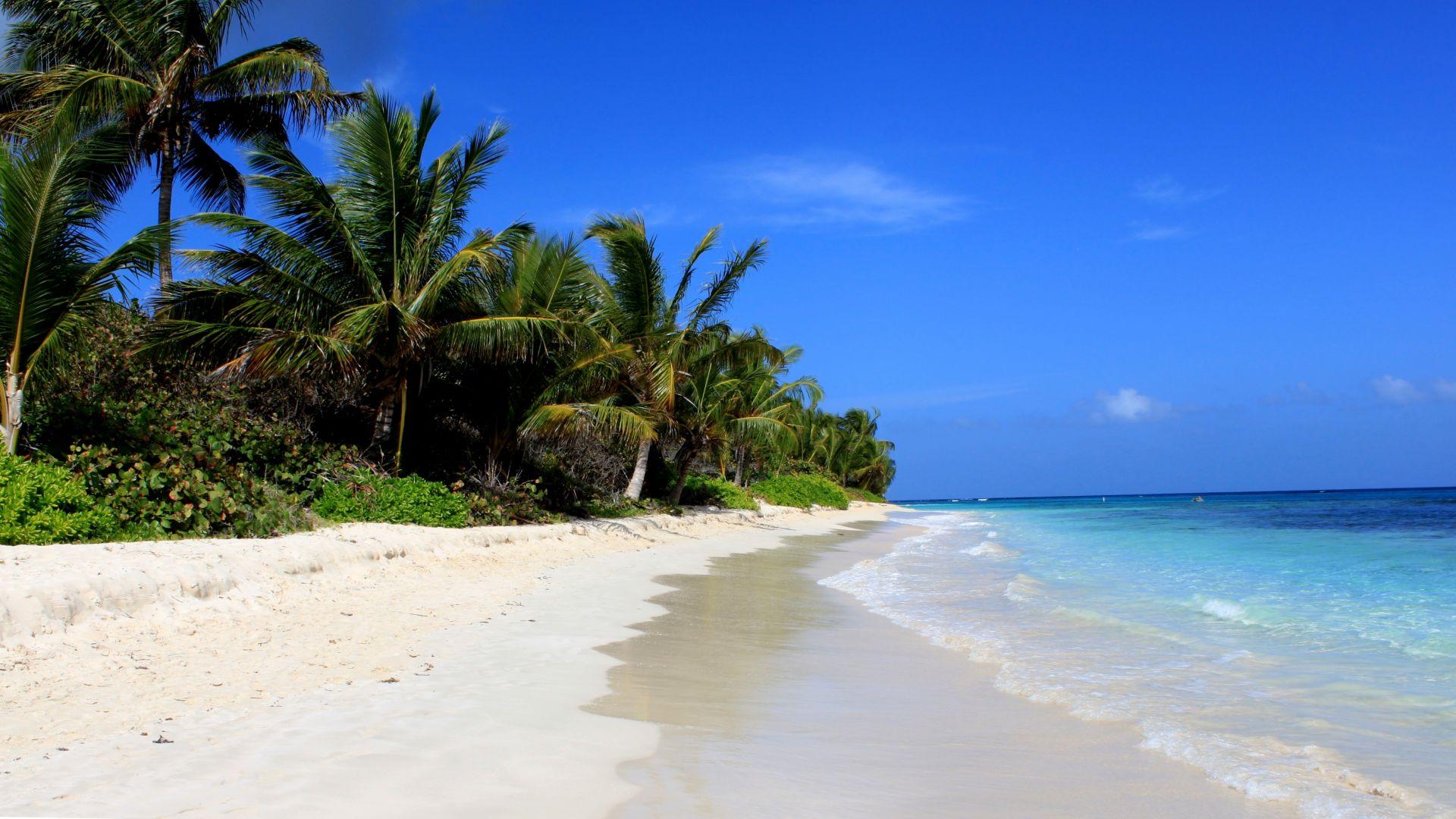 Beach culebra puerto rico palms best beaches of 2016 travellers