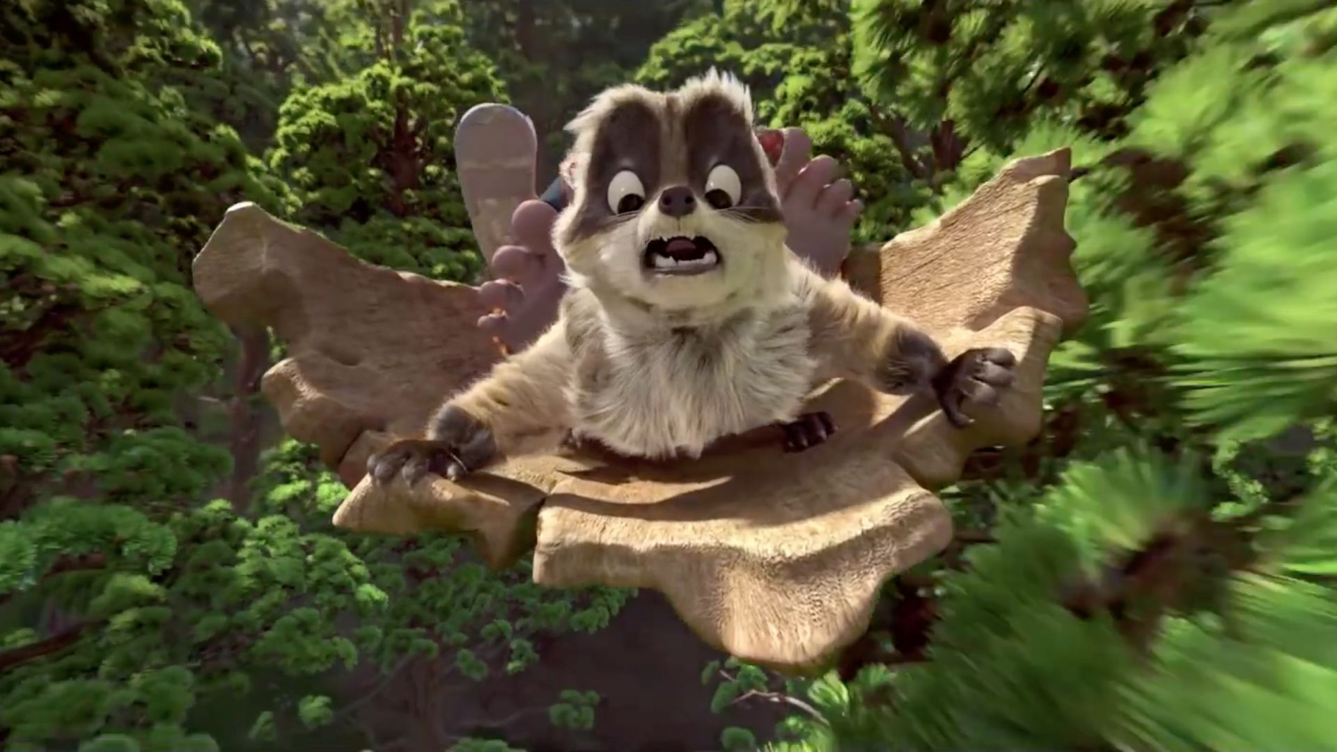 The Son of Bigfoot, raccoon, best animated movies (horizontal)