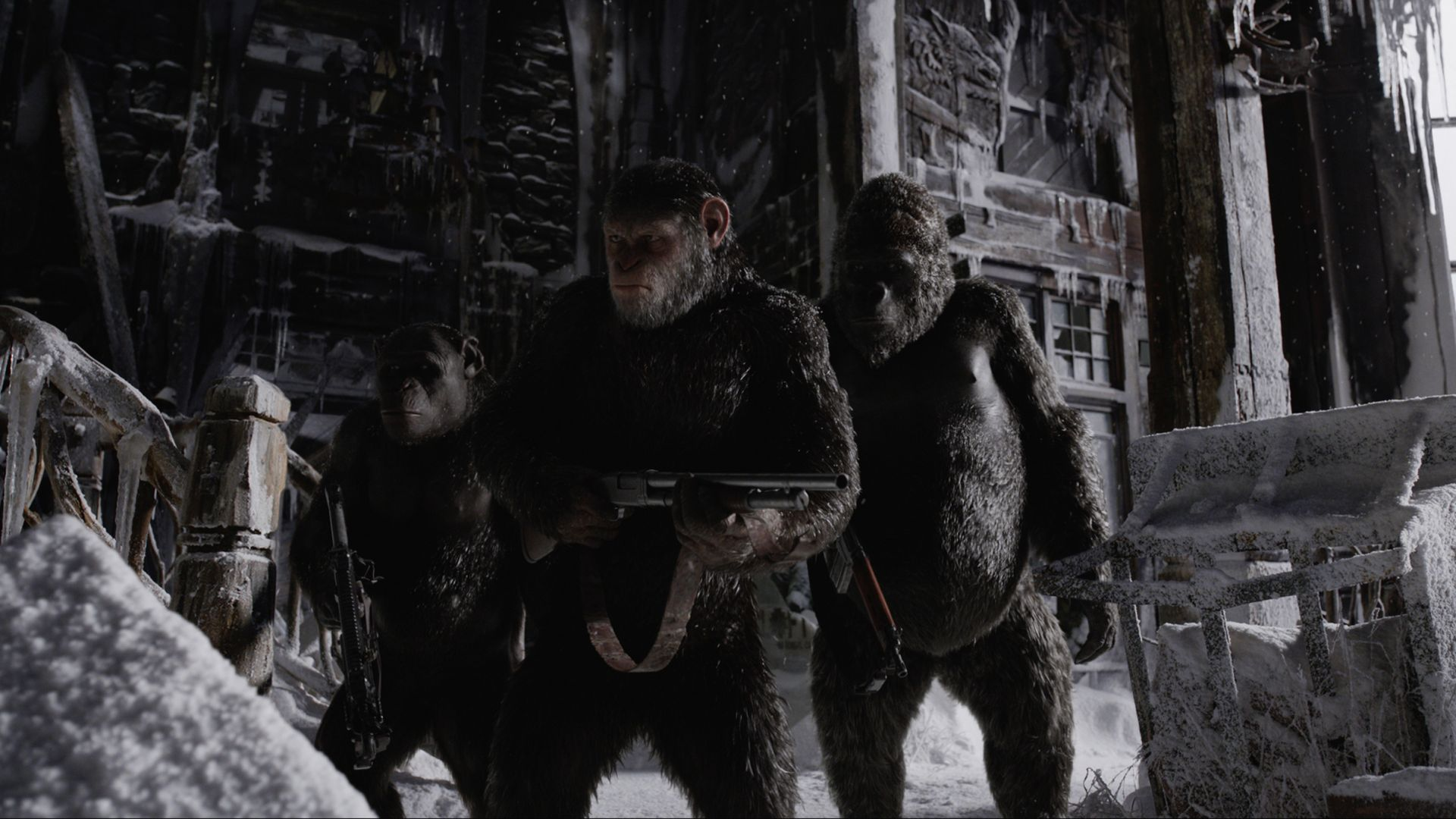 War for the Planet of the Apes, 4k, gorilla, snow (horizontal)