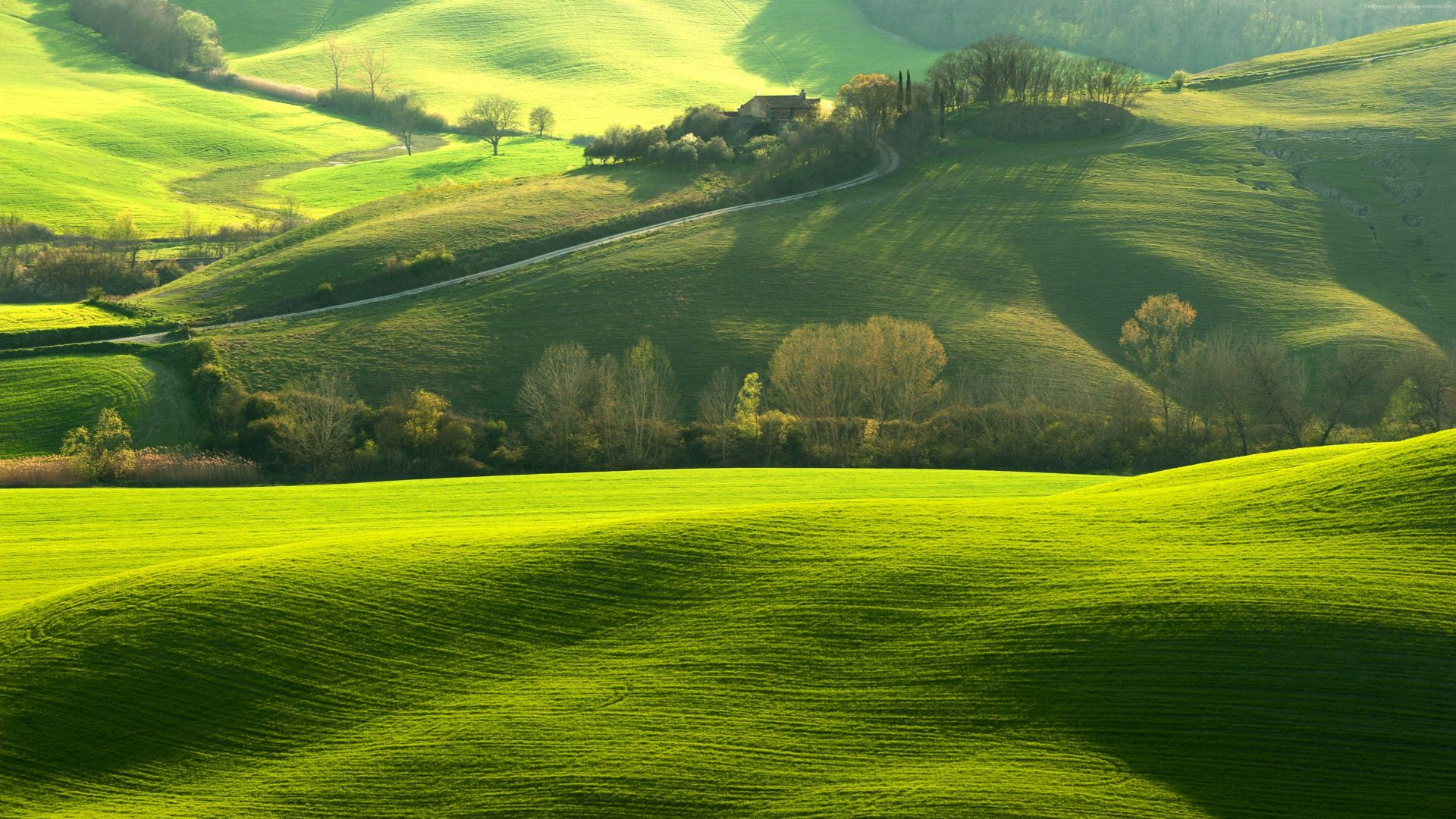 Wallpaper tuscany italy hills green field 8k nature for Green italy