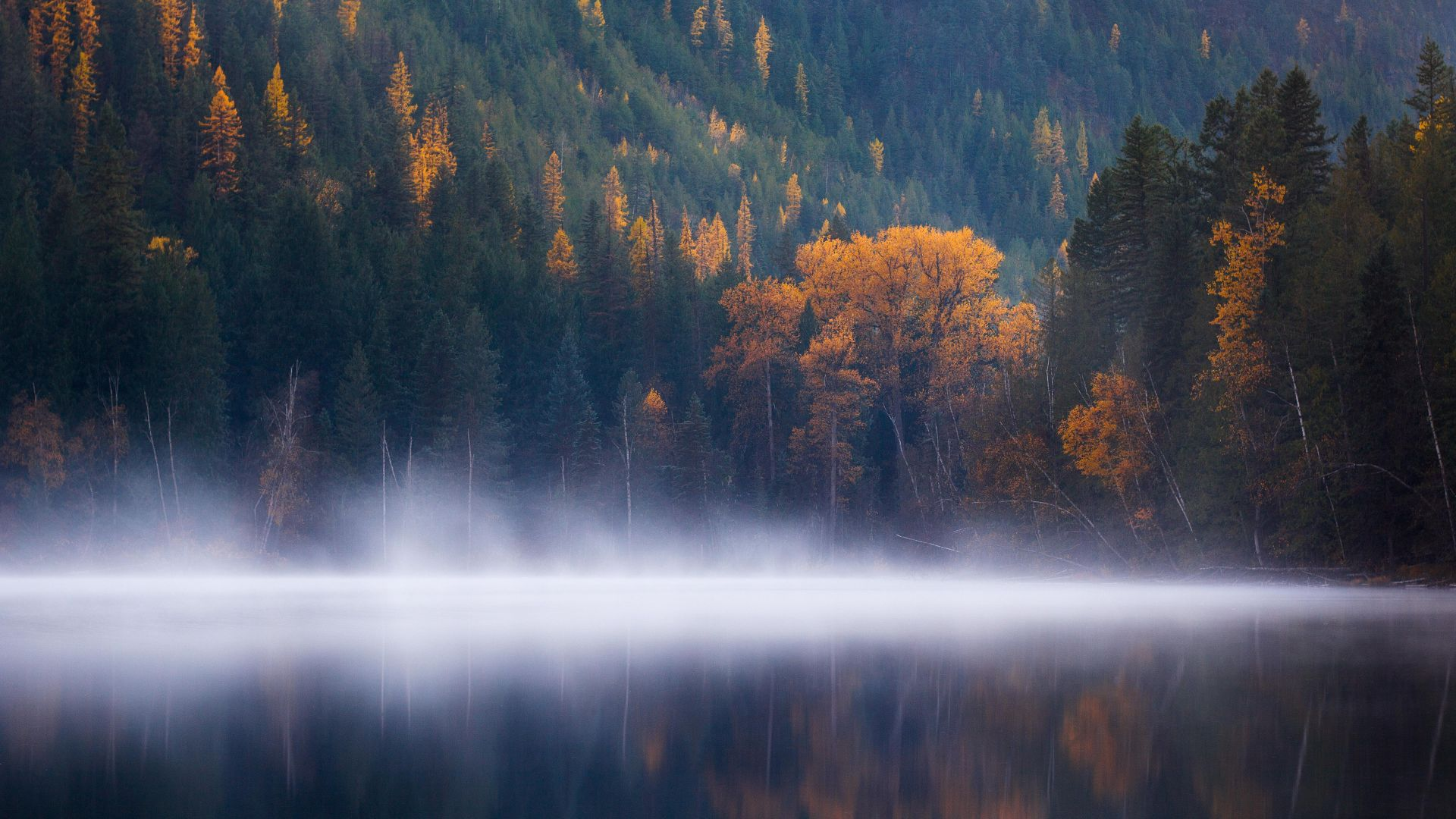 Echo Lake, forest, trees, fog, Columbia, autumn, 5k (horizontal)