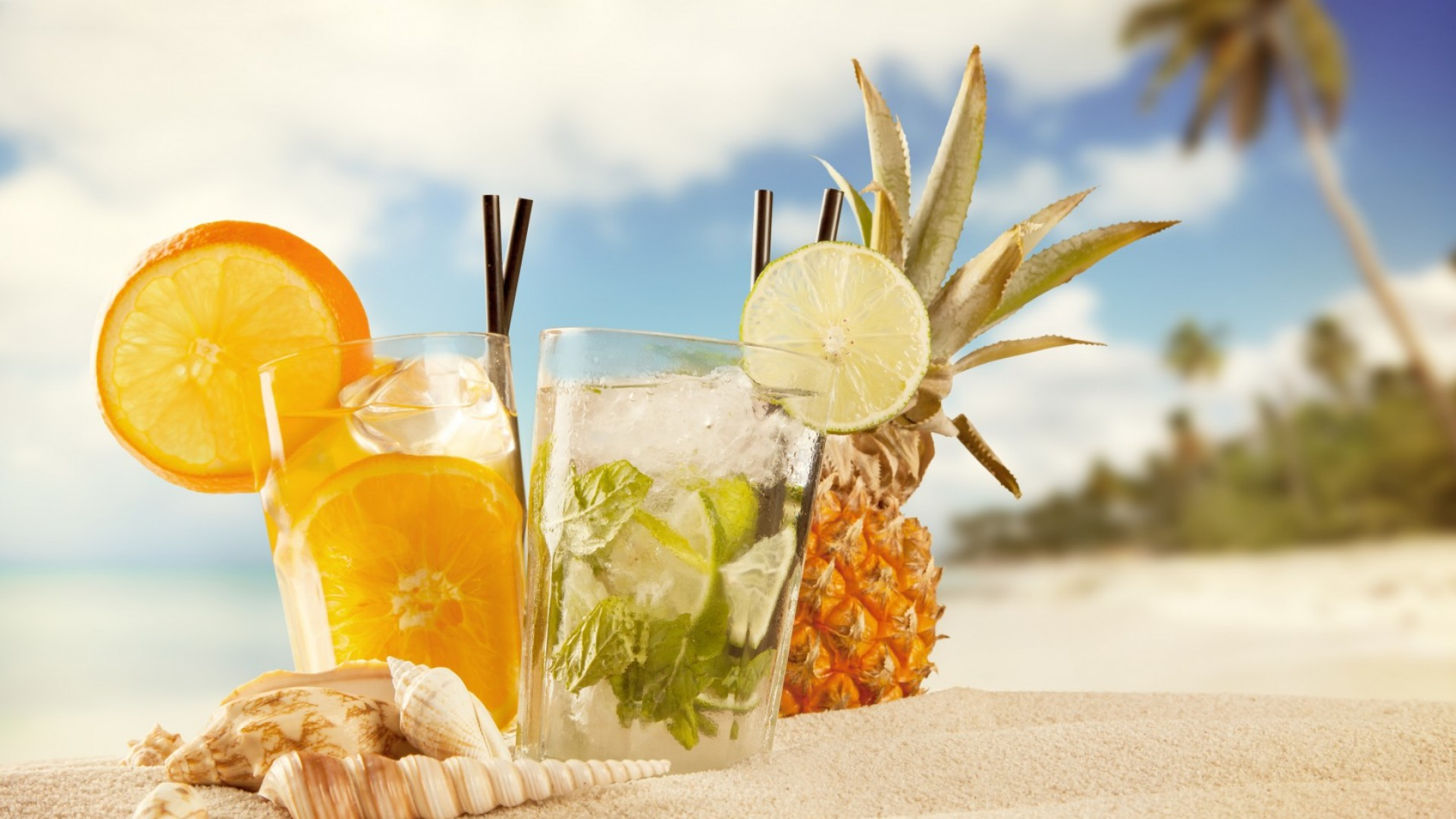 cocktails, ice, fruit, orange, pineapple, beach, summer, sand, shells, sun (horizontal)