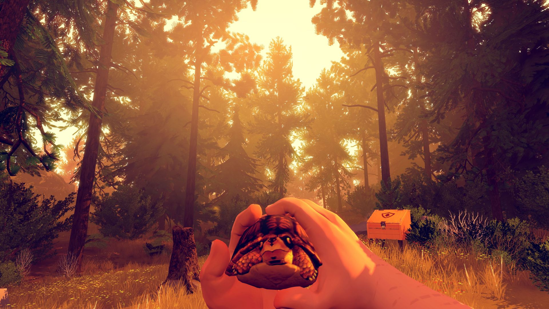 Firewatch, Best Games, game, quest, horror, PC, PS4
