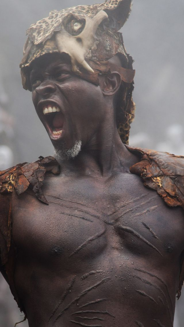 The Legend of Tarzan, Djimon Hounsou, best movies 2016 (vertical)
