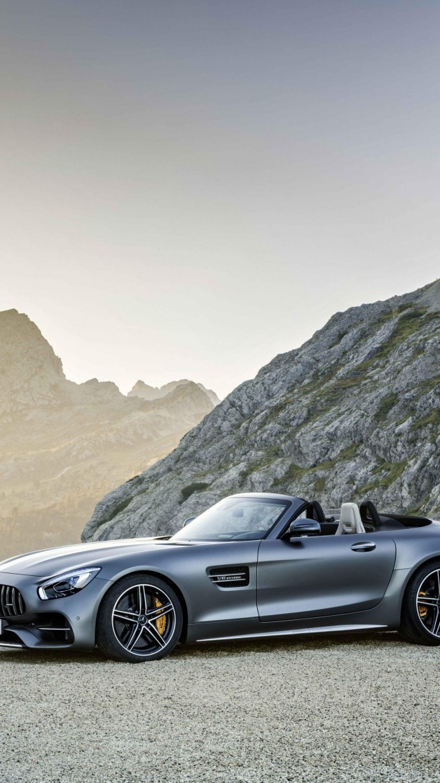 Mercedes-AMG GT C Roadster, paris auto show 2016, roadster, white (vertical)