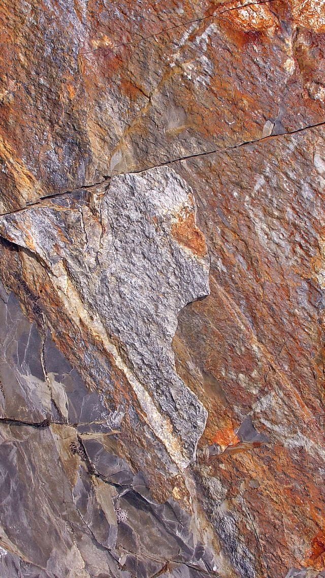 K Dragon Lizard Wallpaper stone, 4k, 5...