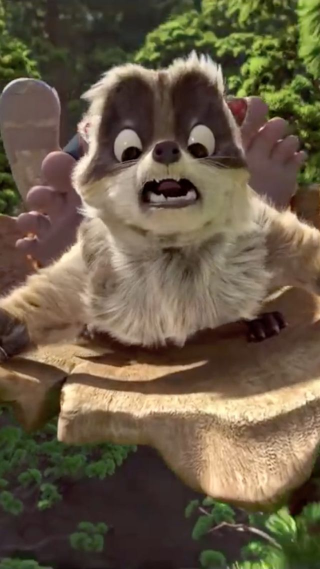 The Son of Bigfoot, raccoon, best animated movies (vertical)