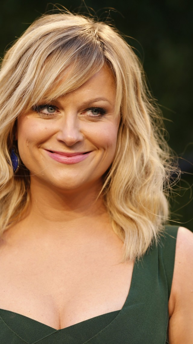 Amy Poehler nude (25 fotos) Young, Twitter, panties
