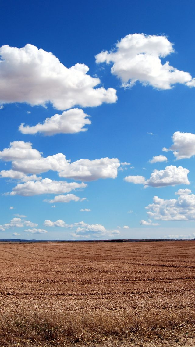 clouds, sky, field, 4k (vertical)