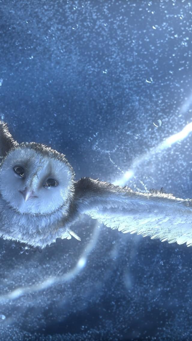 Wallpaper Owl Flying Snow Storm Lightning Blue Bird Art