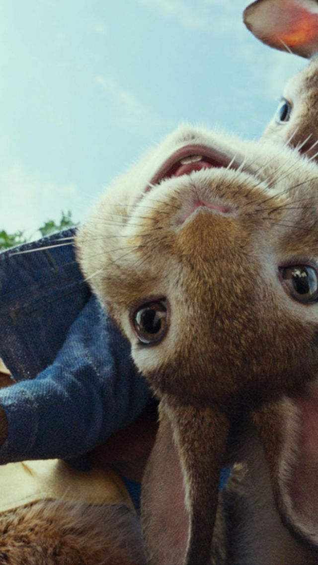 Peter Rabbit, 4k (vertical)