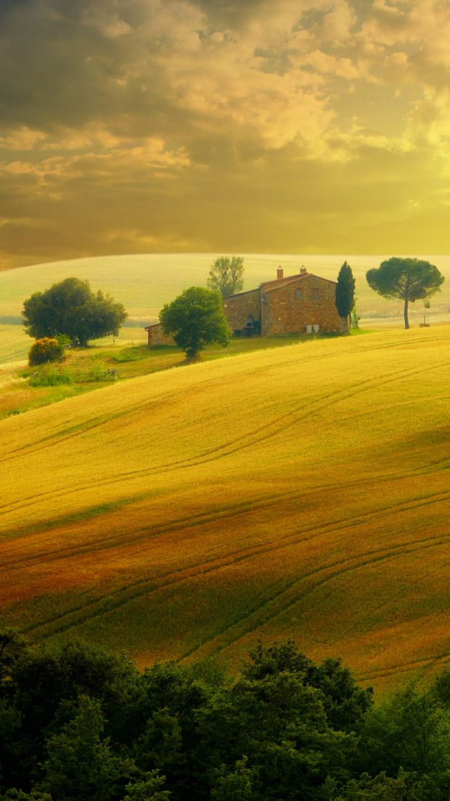 Tuscany, Italy, hills, field, 5k (vertical)