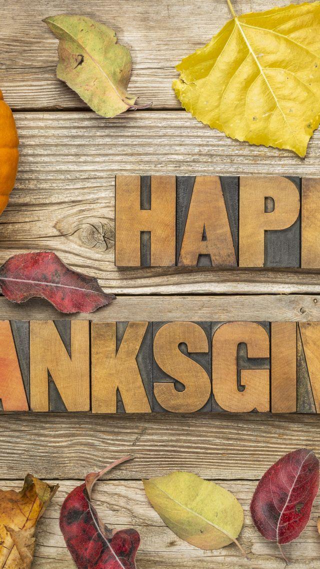 Wallpaper Thanksgiving Day Pumpkin Leaves 5k Holidays 16674