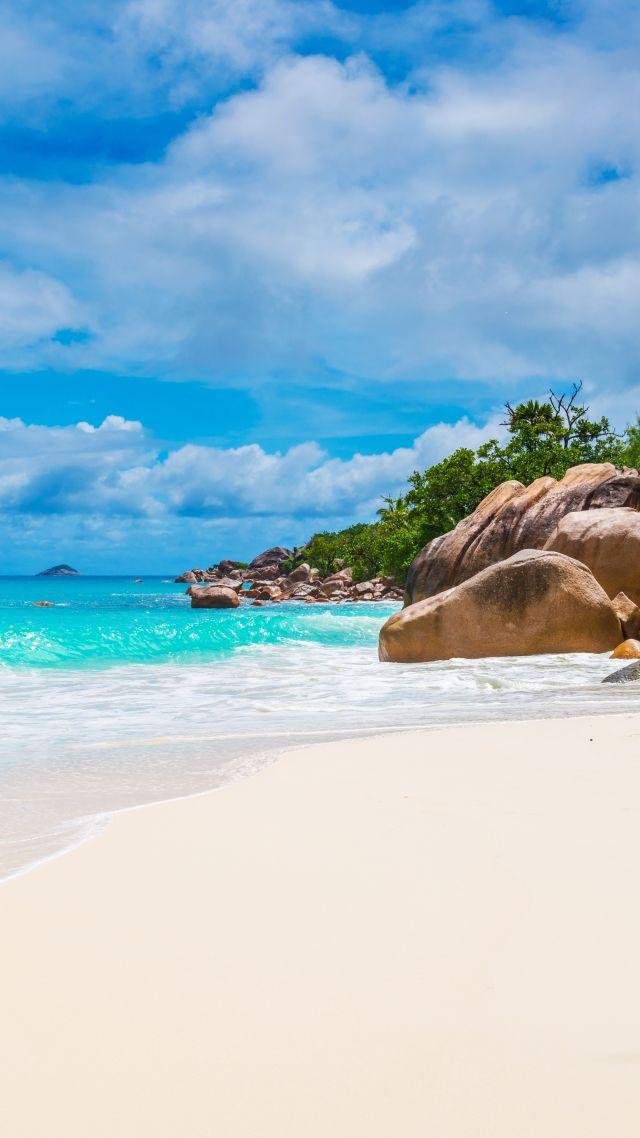Wallpaper Maldives, Seychelles, beach, ocean, coast, palm ...