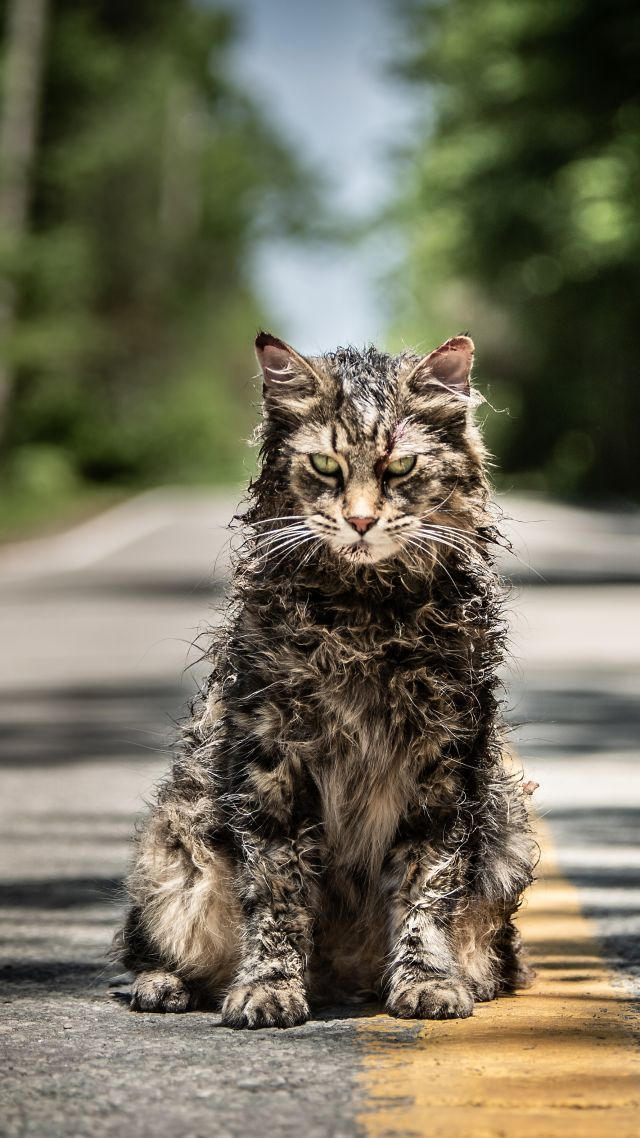 Pet Sematary, 4K (vertical)