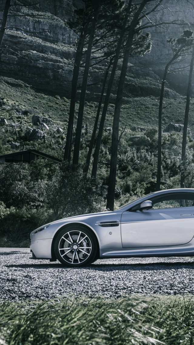 Aston Martin V8 Vantage, sports car, Aston Martin, luxury cars, Gran Turismo, Zagato, side, forest (vertical)
