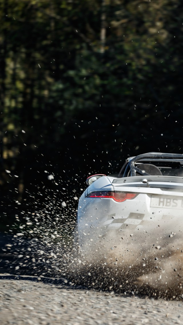 Jaguar F-Type Rally Car, 2018 Cars, 5K (vertical)