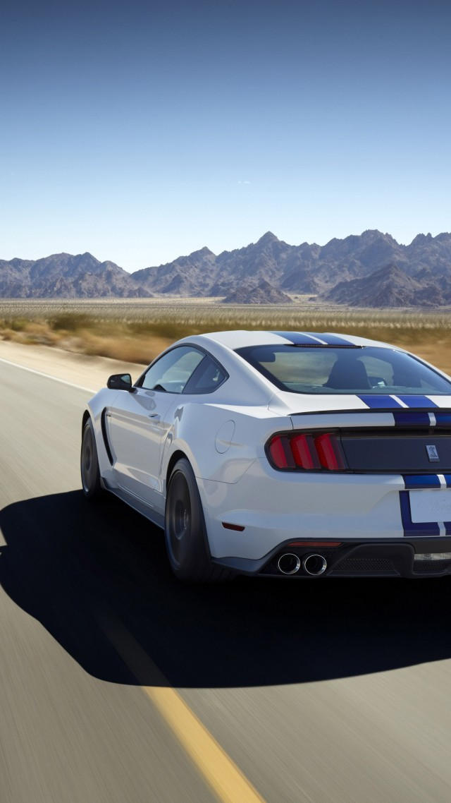 Ford Mustang Shelby GT350 Sports Car Concept