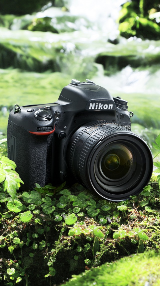 Best Nikon Lens For Food Pictures