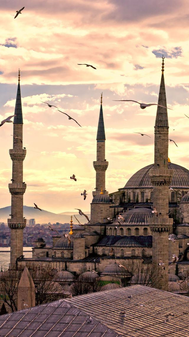 Sultan Ahmed Mosque Istanbul Turkey Travel Tourism Vertical