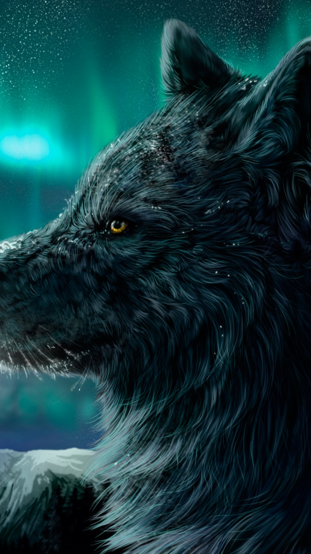 Wallpaper Wolf Aurora Polaris Look Art 4787