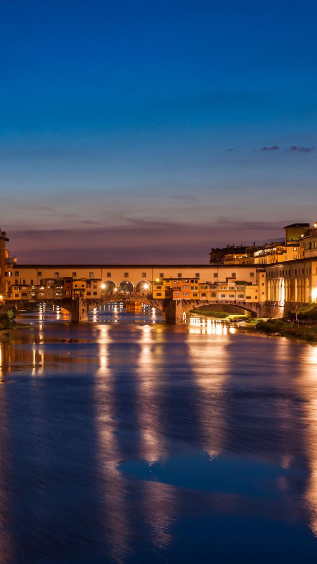 Florence, Italy, Night, Tourism, Travel (vertical)