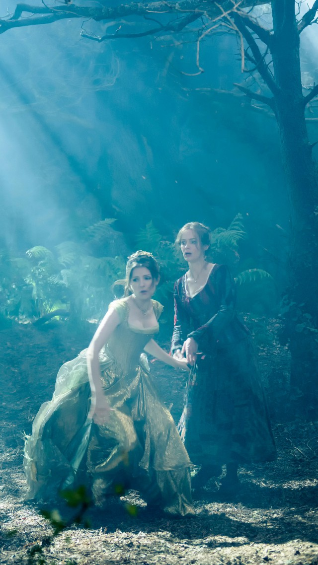 Into the woods, Best Movies of 2015, movie, fairy tale, fantasy, Anna Kendrick (vertical)