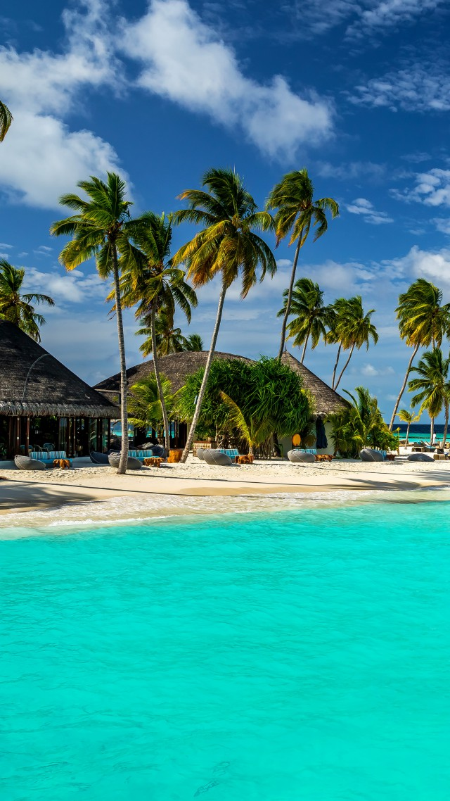 Wallpaper Maldives 5k 4k Wallpaper 8k Indian Ocean Best