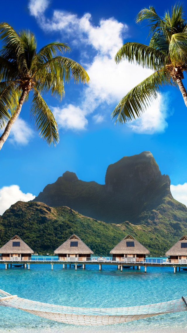 Bora Bora, 5k, 4k wallpaper, French Polynesia, Best beaches of 2017, Best Hotels of 2017, ocean, palm trees, mountains, beach, vacation, rest, travel, booking, palm trees, hammock (vertical)
