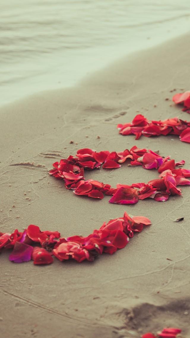 wallpaper shore 5k 4k wallpaper 8k beach petals love sand