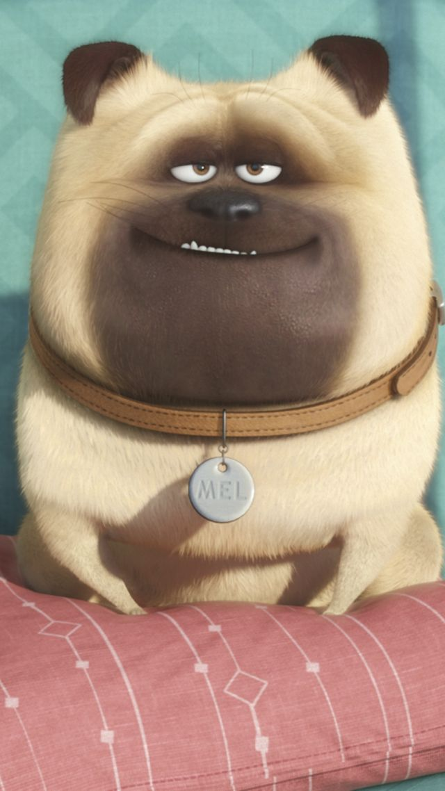 The Secret Life of Pets, Best Animation Movies of 2015, cartoon (vertical)