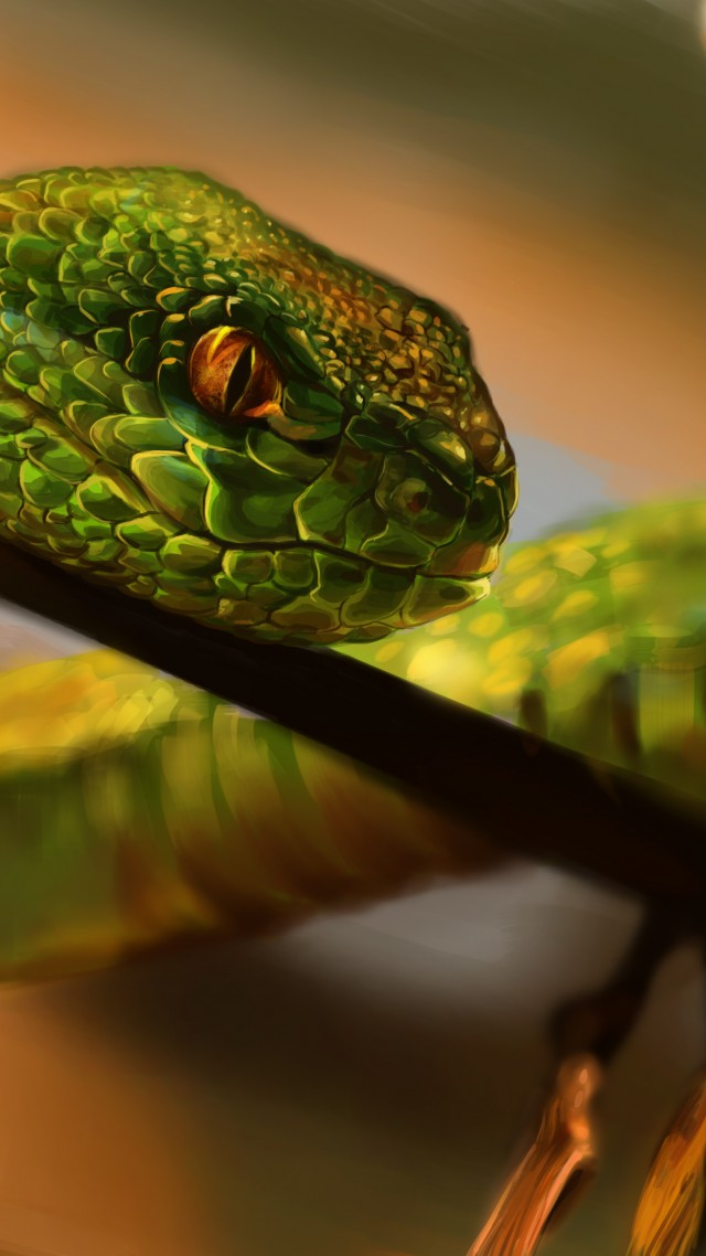 Wallpaper Snake, green, reptile, eyes, art, Animals #712