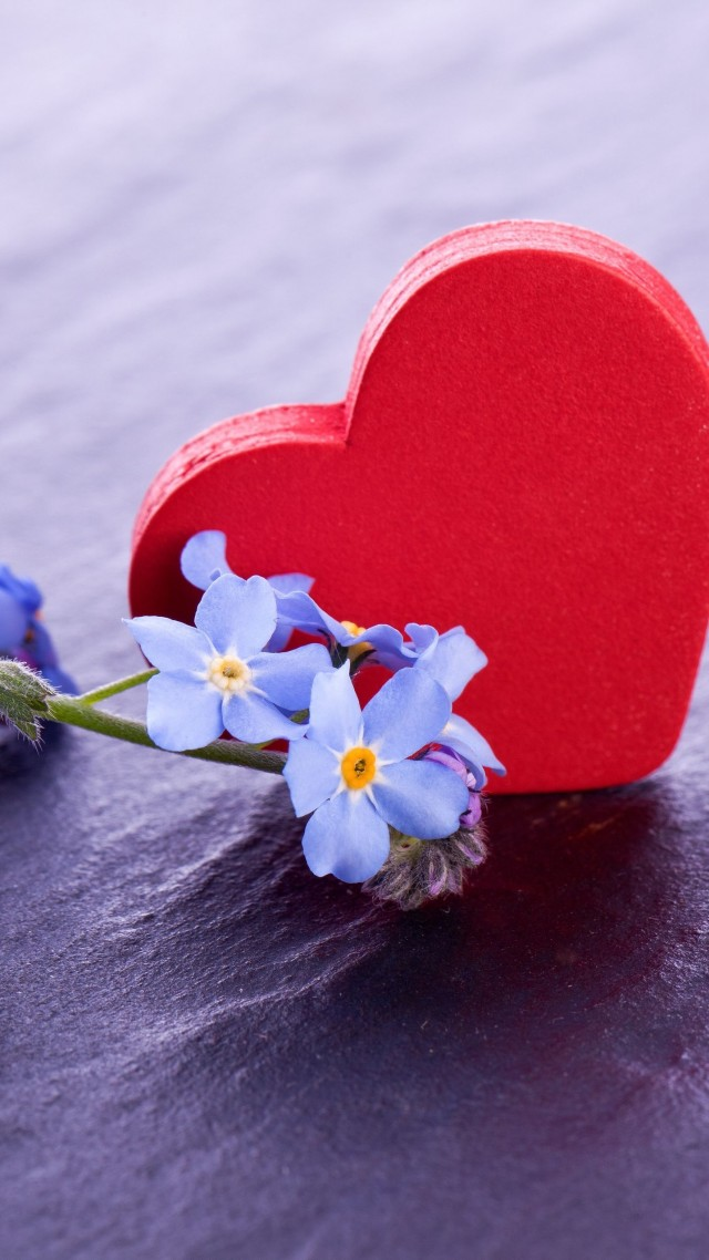 Wallpaper Valentine S Day February 14 Hearts Flowers
