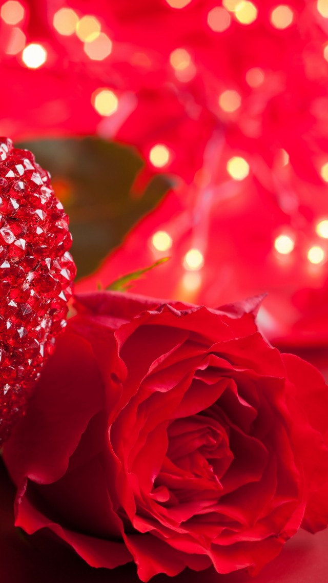 Wallpaper Rose 5k 4k Wallpaper Heart Valentine S Day Love