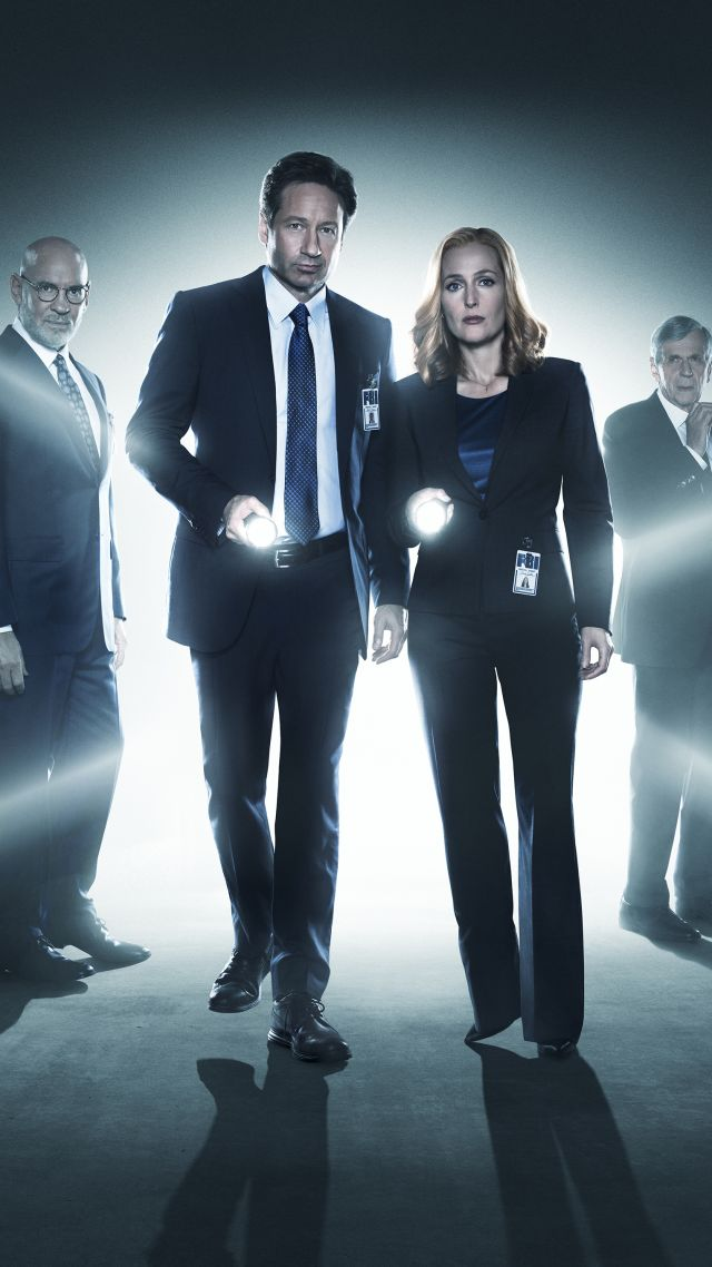 The X-Files, David Duchovny, Best TV series, detective (vertical)