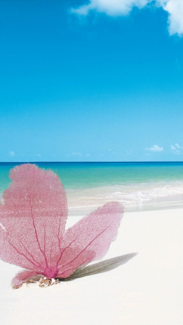 Wallpaper Playa Paraiso  Cayo Largo  Cuba  Best Beaches Of